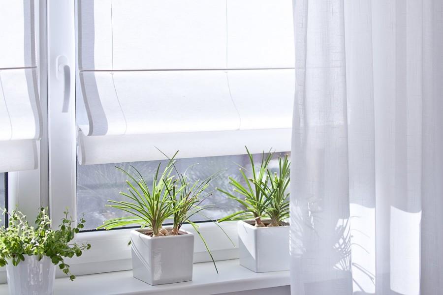 ventana 1