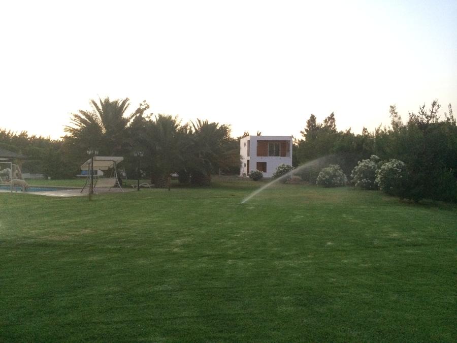 vista cabaña desde jardin