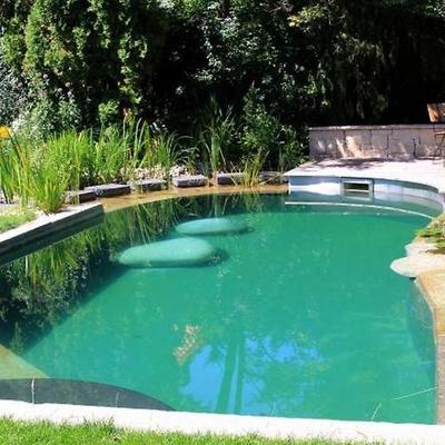 Piscinas naturales: el baño más dulce y ecológico