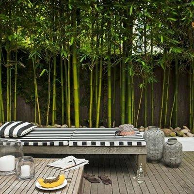 Piso de madera en terraza