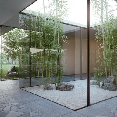 Living con jardín interior