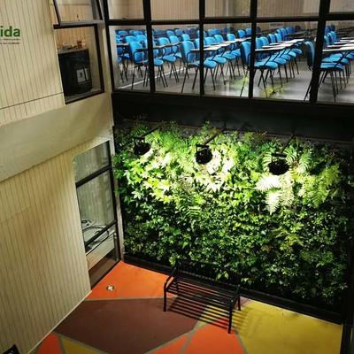 Descubre cómo mantener un jardín vertical
