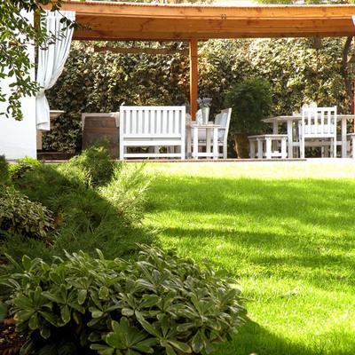 Cómo preparar tu jardín para la primavera
