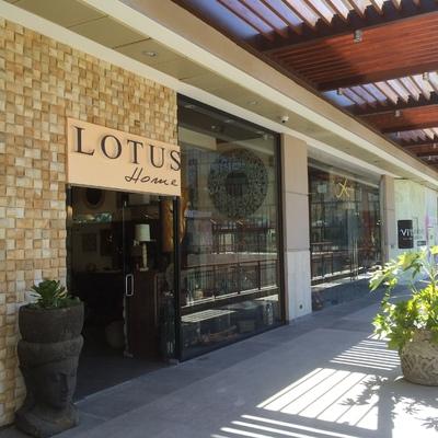 Tienda Lotus Home - Mall Vivo Los Trapenses - año 2014