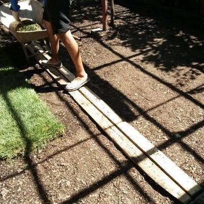Implementación pasto alfombra