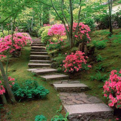 Cómo conseguir un jardín sostenible y fácil de mantener