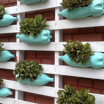 Aprende cómo diseñar un jardín resistente a las olas de calor