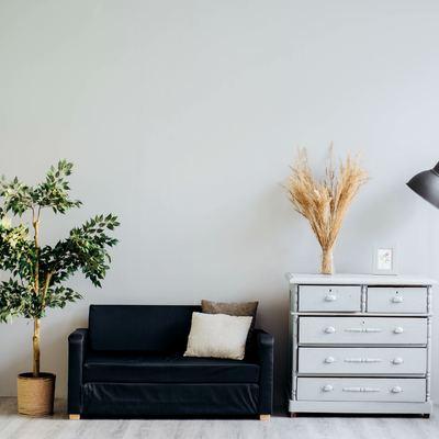 living minimalista