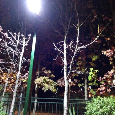 Proyecto iluminación Led Condominio