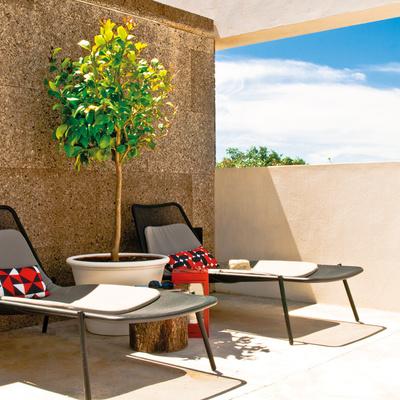Terraza con muro de corcho