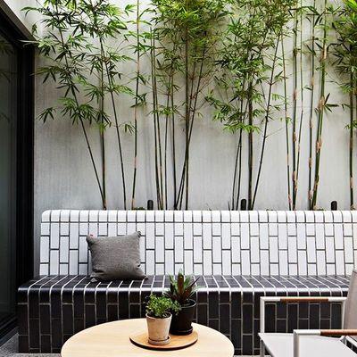 Guía para reformar tu patio