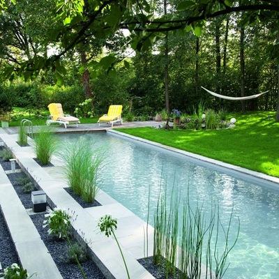 7 conceptos que necesitas saber sobre las piscinas naturales