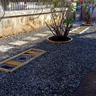 Proyecto jardín seco