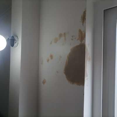 Reparación y pintado +56996368977 no dude en cotizar somos de Concepción