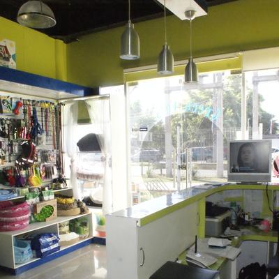Proyecto Remodelación - Local Comercial - Veterinaria Green Vets