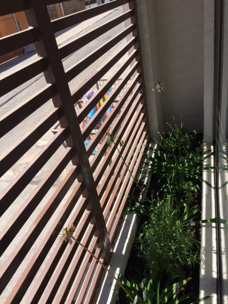 Foto Jardinera Interior De Constructora Constanzo 120690 Habitissimo - Jardinera-interior