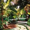 Remodelar jardín, paisajismo