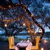 Iluminación en árbol