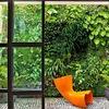 Jardín con plantas