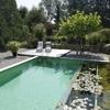 Pintar reja perimetral piscina, reja ante jardines y portones de acceso peatonal