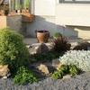 jardín con poca agua