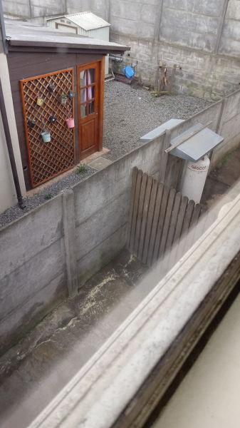 ¿Cuándo debo hacer contrafuego para mi vecino?