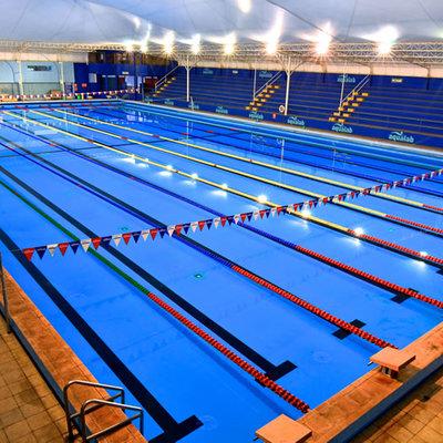 Construccion de piscina olimpica a 10 km de chillan for Piscina olimpica castellon