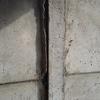 Reparacion muro bulldog (pandereta)
