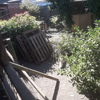 Retirar residuo del patio principalmente palet