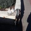Reparar jardinera de ladrillo y soldar pilara que sujeta cadena del estacionamiento