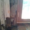 Reparación con madera pared de casona antigua en viña del mar