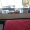 Cajoneria bow window