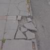 Reparar acceso peatonal y retirar cielo falso