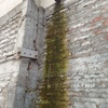 Lijar y pintar una pared 300 metros cuadrados.