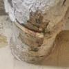 Detectan y reparar tubería de desagüe