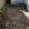 Instalación de palmetas en estacionamiento de casa