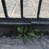 Reparación portón eléctrico de corredera