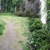 Remodelación pequeño jardín